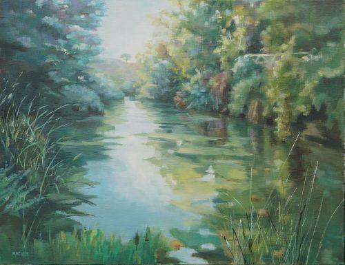 Reflejos de rio